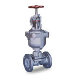 DIAPHRAGM VALVES3